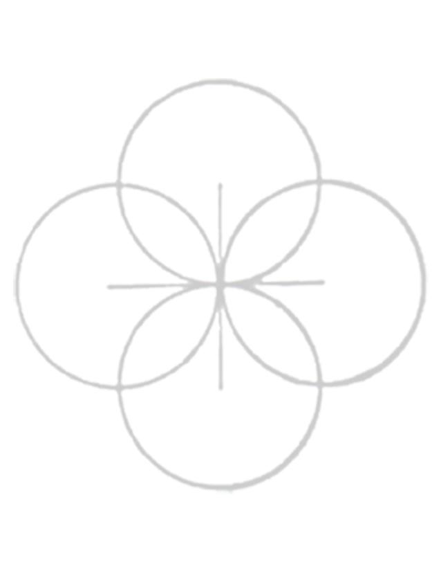 petal icon