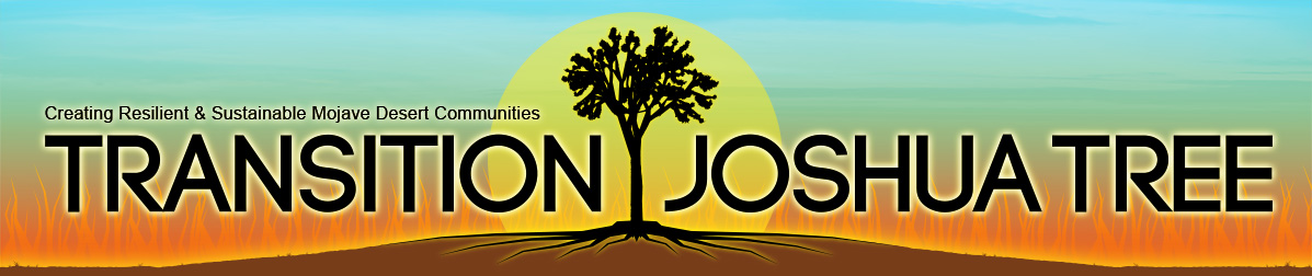 Transition-Joshua-Tree_banner2014